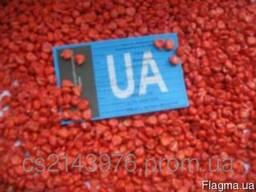 Семена Кукурузы, Солонянский 298 СВ, Розовский 310 СВ