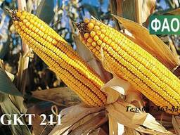 Семена кукурузы Венгерской селекции ГКТ 211 (ФАО 210)