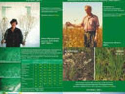 Семена Купить Обработка Семян Перед Посевом Оборудование для