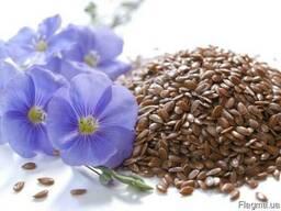"""Семена льна """"Версаль"""", """"Надёжный"""", """"Южная ночь"""", """"Золотистый"""""""