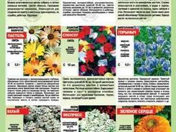 Семена Луганск