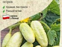 Семена огурцов в ассортименте