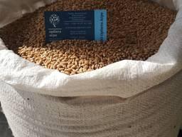 Семена озимой пшеницы Юлия нет в наличии
