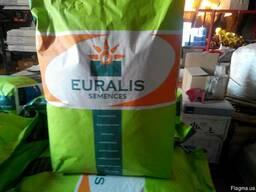 Семена подсолнечника Евралис