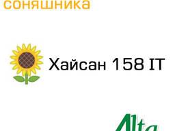 Семена подсолнечника Хайсан 158 IT Альта Сидс(евро-лайтнинг)
