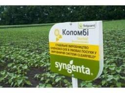 Семена подсолнечника Коломби (Syngenta)