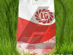 Семена подсолнечника Лимагрейн (Limagrain)