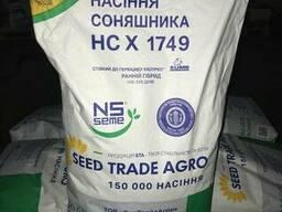 Семена подсолнечника НС-Х-1749 (Гранстар) 2018 год
