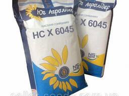 Семена подсолнечника НС Х 6045 (Евро-лайтнинг)