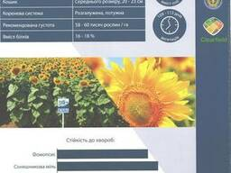 Семена подсолнечника НС Таурус Clearfield