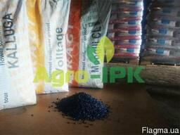 Семена подсолнечника (Ражт) Вольтедж, Мугли, Каллуга, Оптом