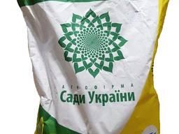 Семена подсолнуха Анастасия ОР (Сербия)