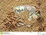 Семена сои трансгенный сорт Kansas ГМО - фото 8