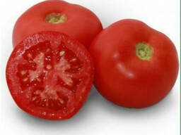 Семена томата KS 898 F1 фирмы Китано