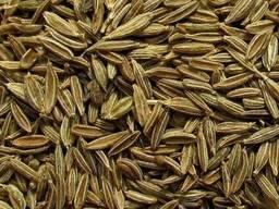 Семя - кориандр, пажитник, горчица, тмин, кумин, калинджи