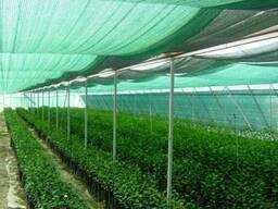 Сетка для сельского хозяйства , затенение 60%, 3, 0х50, 0