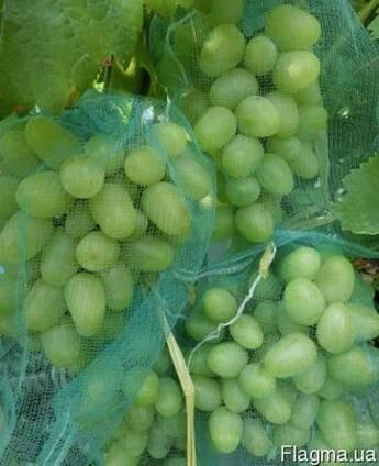 Сеточка-рукав для винограда защита от ос.