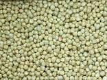 Шарики воздушные кукурузные зеленые 3-5 мм 1 кг - фото 1