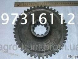 Шестерня промежуточная 240-1006240-А (МТЗ, Д-240)