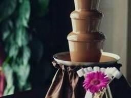 Шоколадний фонтан та фруктові композиції