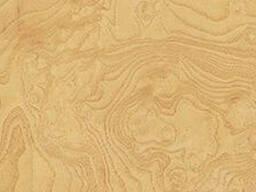 Шпон Ясень Корень (Белый) - фото 1