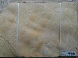 Шпон Ясень Корень (Белый) - фото 5