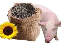 Шрот подсолнечный шрот соняшниковий sunflower meal