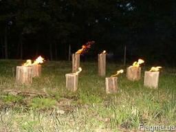 Шведские факелы - фото 2