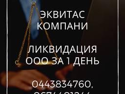 Швидка ліквідація ТОВ Одеса