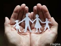 Сімейний адвокат. Поділ спільнонажитого майна подружжя