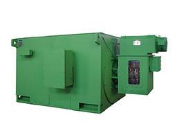 Высоковольтный Синхронный Электродвигатель Переменного тока