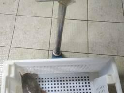 Живой Клариевый Сом 70 грн/кг.