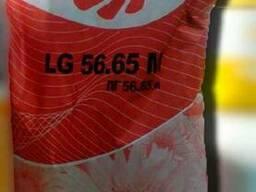 Соняшник ЛГ 5665 М