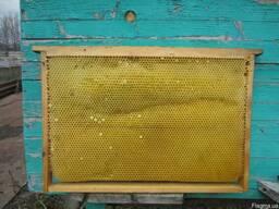Соти для бджіл-рамки-сушь Дадан