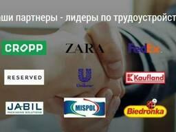 Сотрудничество с польской фирмой / работа в Польше