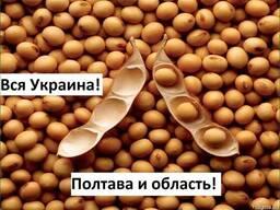 Куплю Сою Полтава Украина