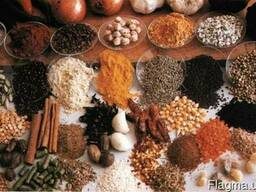 Специи, приправы, сушеные овощи и корни в ассортименте