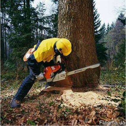 Спил деревьев, обрезка сада, покос травы, расчистка территории