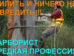 Спилим деревья в Одессе и Области