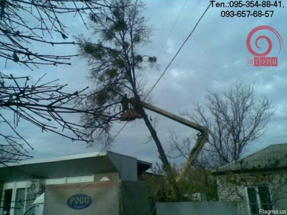 Спилить дерево Харьков