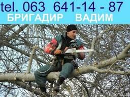 Спил деревьев, обрезка аварийних веток Одесса