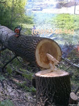 Спиливание - Обрезка деревьев, Обрезка сада. Автовишка 18-22