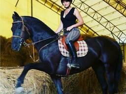 Спортивная тренировка на лошади для людей с сидячим образом