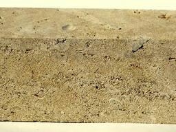 Стеновой ракушняк