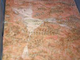 Лосось стрипсы ( обрезь филе лосося)
