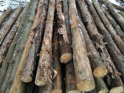 Деревянные столбики кругляк подтоварник тонкомер строительный Сосна
