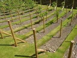 Столбики точенные. Шпалеры для сада. Сосна. 4-16см.