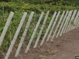 Столбики виноградные