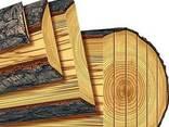 Услуги распиловки древесины в городе Харьков. от 250грн. - фото 1