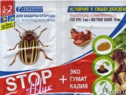 Стоп жук